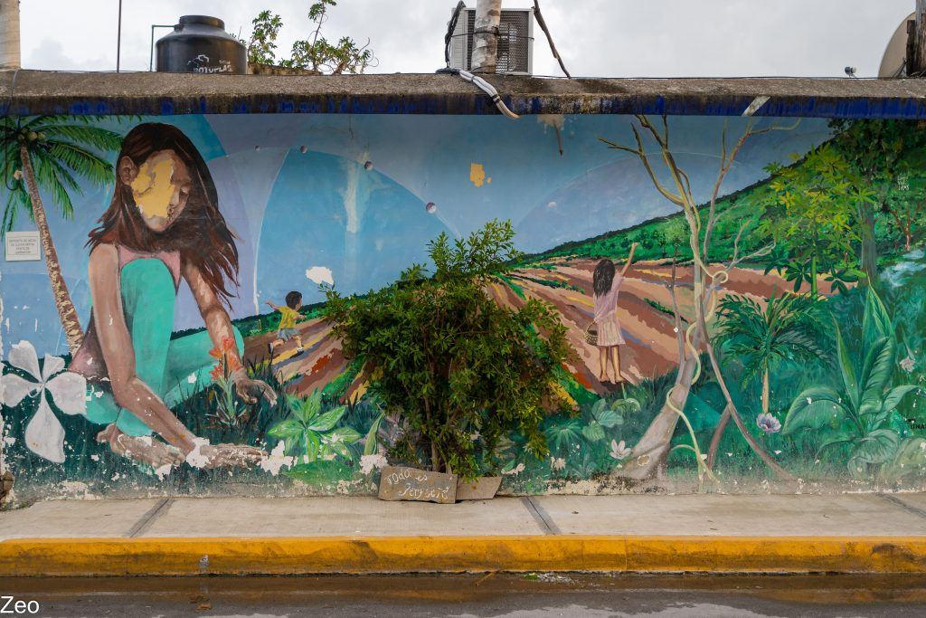 Tulum Street Art: girl in nature
