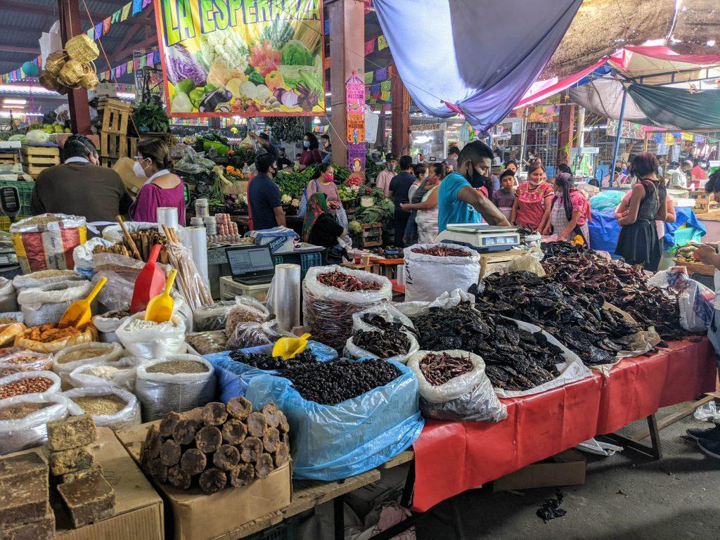 Oaxacan Food | Traditional Oaxaca Food | Chilis