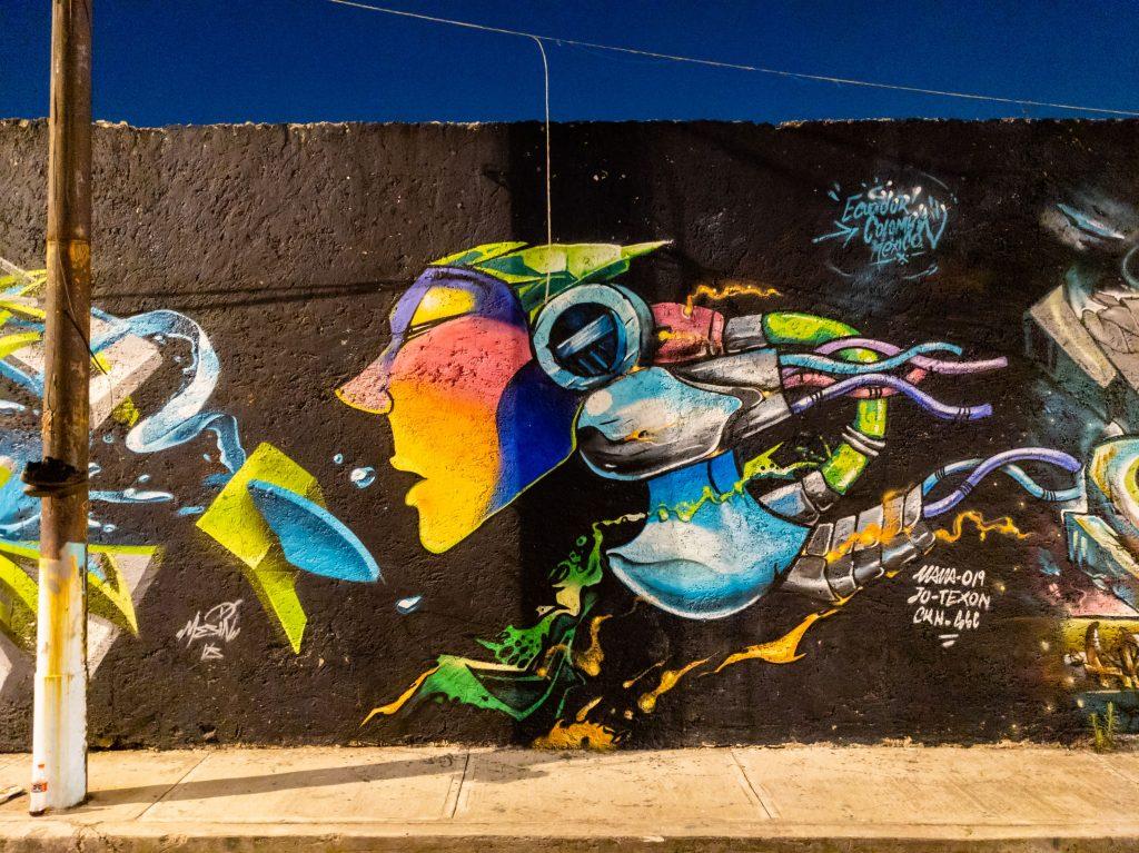 Mexico City Street Art | Mexico City Mural | Doctores Alley