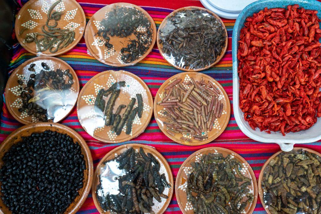 Mercado de San Juan | San Juan Market | Creepy Crawlies